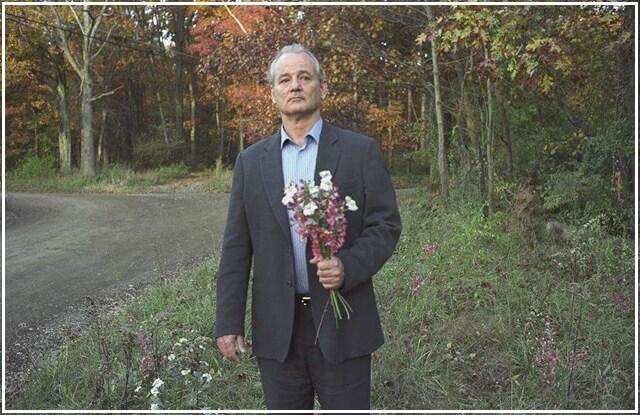 Broken Flowers Bill Murray